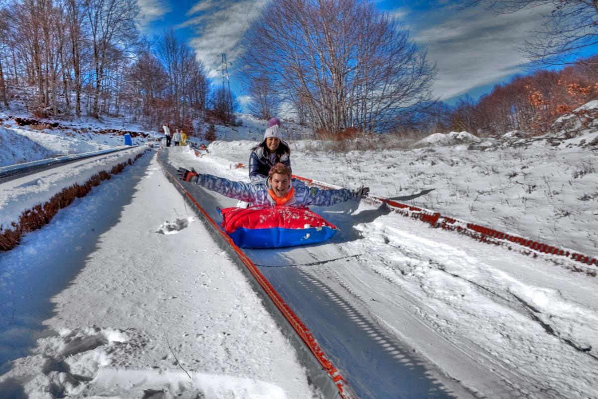 Toboggan sled